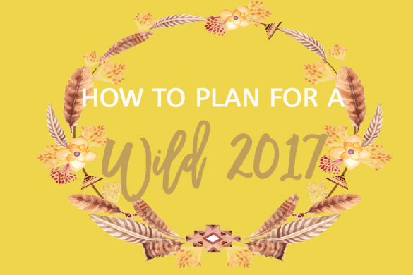 How To Plan For A Wild 2017